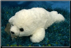 "Floppy White Harp Seal 12"" by Wishpets"