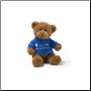 "I'm the Big Brother Message Bear 6"" by Gund"