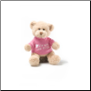 "I'm the Big Sister Message Bear 6"" by Gund"