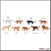 TOOBS®: Big Cats Figures by Safari Ltd