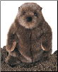 "Chuckwood Ground Hog 11"" by Douglas"