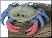 "Buster Blue Crab 9"" by Douglas"