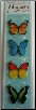 Butterflies Magnetic Page Clips Set of 4 by Re-marks