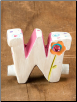"Name Keepsake ""W"" by Natural Life"