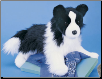 "Chase the Border Collie 16"" by Douglas"