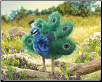 "Small Peacock Hand Puppet 10"" by Folkmanis"