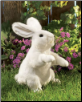 "Standing White Rabbit Hand Puppet 17"" by Folkmanis"