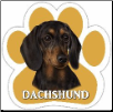 Black Dachshund Car Magnet by E&S Pets