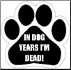 In dog years I'm dead Car Magnet by E&S Pets