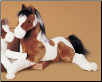 "Natches Indian Paint Horse 27"" by Douglas"