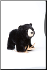 "Morley Black Bear 8"" by Douglas"