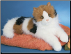 "Puzzle Calico Cat 19"" by Douglas"