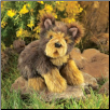 "Yorkie Puppy Hand Puppet 11"" by Folkmanis"