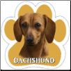 Red Dachshund Car Magnet by E&S Pets