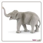 "Wild Safari:  Asian Elephant Figure 6"" by Safari Ltd"