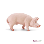 "Safari Farm:  Boar 4"" by Safari Ltd"
