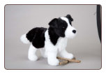 "Meadow Border Collie 8"" by Douglas"