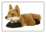 "Fox Medium 11"" by Miyoni"