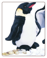 "Waddles Small Emperor Penguin 10"" by Douglas"