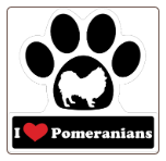 I Love Pomeranians Car Magnet by Little Gifts