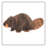 "Chops Beaver 11"" by Douglas"