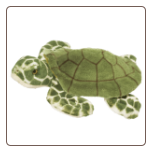 "Toti Turtle 13"" by Douglas"