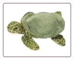 "Tillie Turtle 7"" by Douglas"